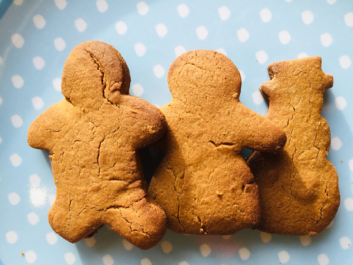 Dark gingerbread biscuits.jpeg