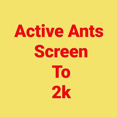 Screen to 2K: 8 Week Program