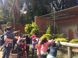 Excursão ao Zoológico
