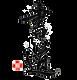D25D7F79-F49D-44C0-AC82-70488C1E015B.png