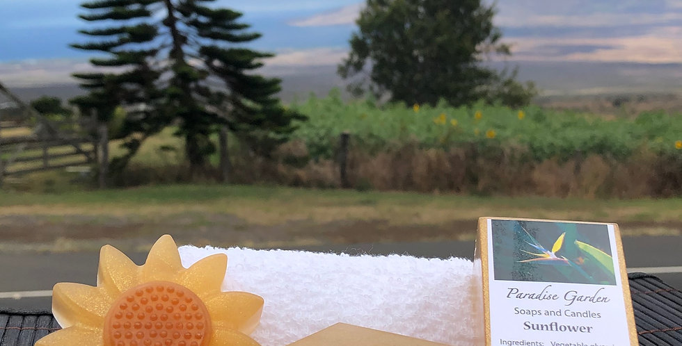 Sunflower Glycerin Bar Soap.  Light Gold in Color.  Smells Like a Bright and Clean Sunny Floral Scent.