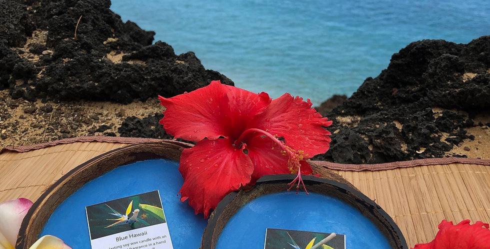 Blue Hawaii Soy Wax Candle in a Floating Coconut Shell.  Bright Blue in Color, and Smells fresh, clean, and invigorating!