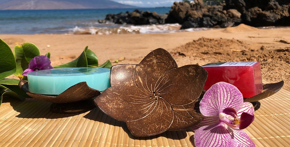 Plumeria Shaped Hand Carved Coconut Shell Soap Dish