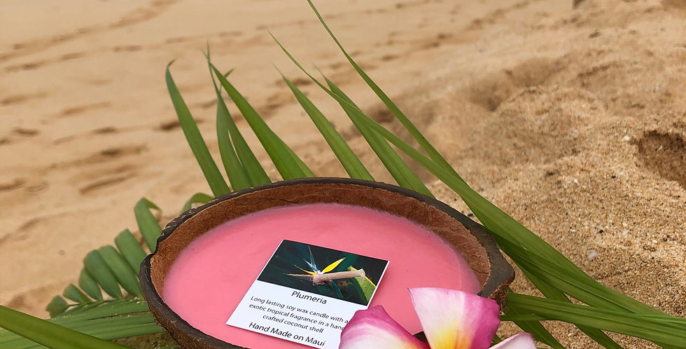 Plumeria Soy Wax Candle in a Floating Coconut Shell.  Pink in Color, Smells like Beautiful Island Flowers.