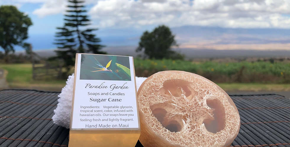 Sugar Cane Small Loofah Soap.  Tan in Color.  Smells like Warm Rich Sparkling Sugar Cane with a Touch of Vanilla.
