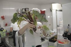 Aula de culinária/saberes orgânicos!