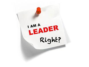 Am I a Leader?