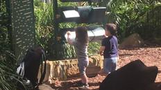 Outdoor Kids Activity