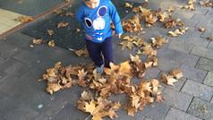 Enjoying the North Shore Autumn Leaves