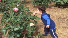 Who said boys don't like flowers