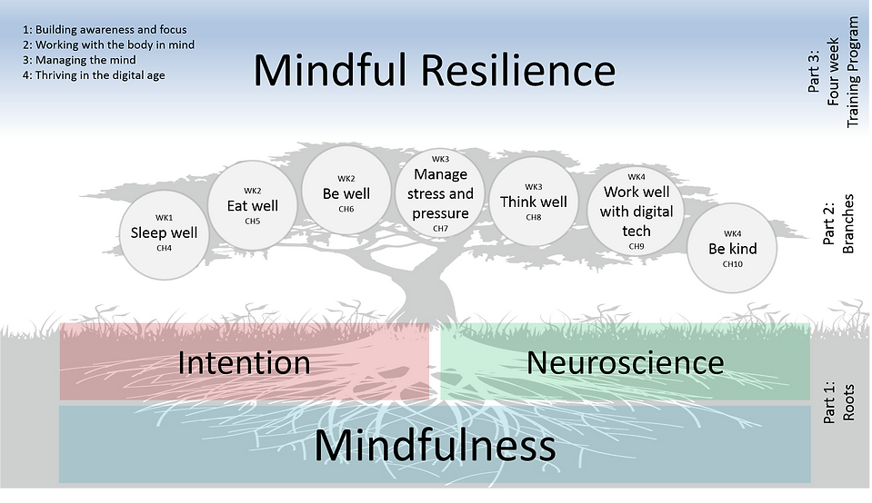 MF resilience components detailed.png
