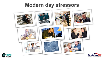 WorkplaceMT online slides example 3.png