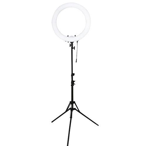 Led Ring Floor Lamp