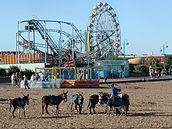 Skeg Beach.jpg