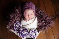 Maine Newborn Photographer