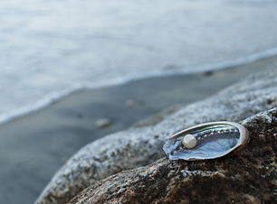 pearl oyster.jpg