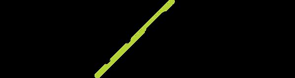 ProDev_Logo_Black_Neon_edited.png