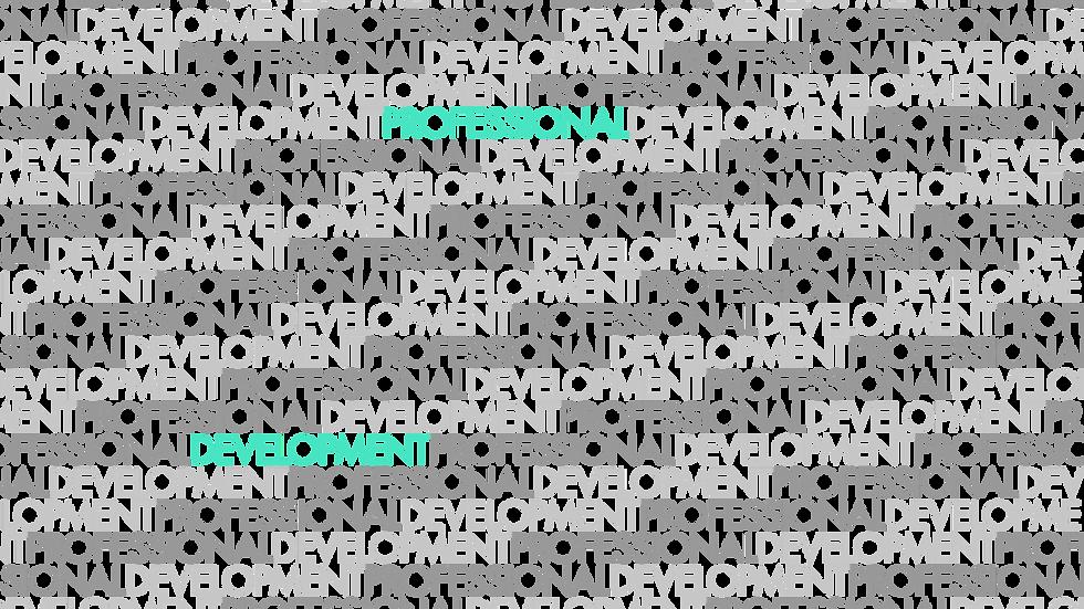 ProDev Website - Professional Developmen