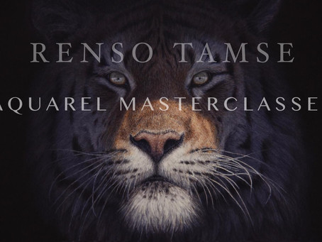 Online Masterclass Renso Tamse available