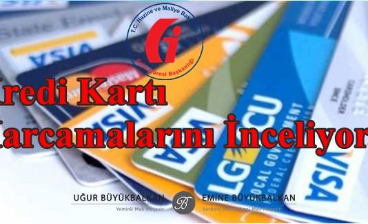 Maliye Bakanlığı Kredi Kartı Harcamalarını İnceliyor