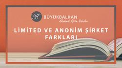 ugurbuyukbalkan_ugur buyukbalkan_limited-sirket-anonim-sirket-