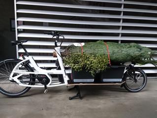 Weihnachtsbäume auf dem Bike