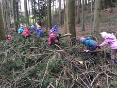 Klettern auf Totholz