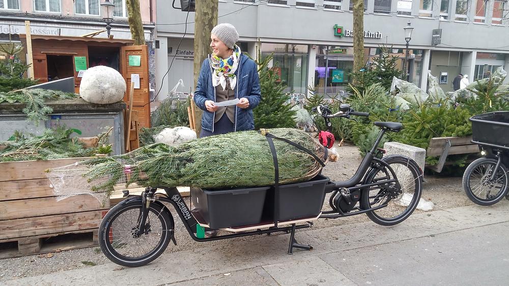 Weihnachts-Baum Transport