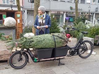 Ausfahren von Weihnachts-Bäumen