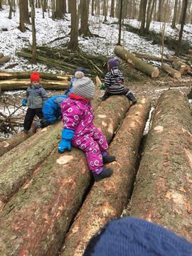 Spielplatz im Wald