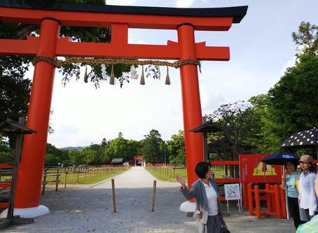 京都彩りの旅