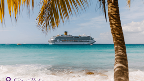 To Cruise or Not To Cruise: What is the Real Question?