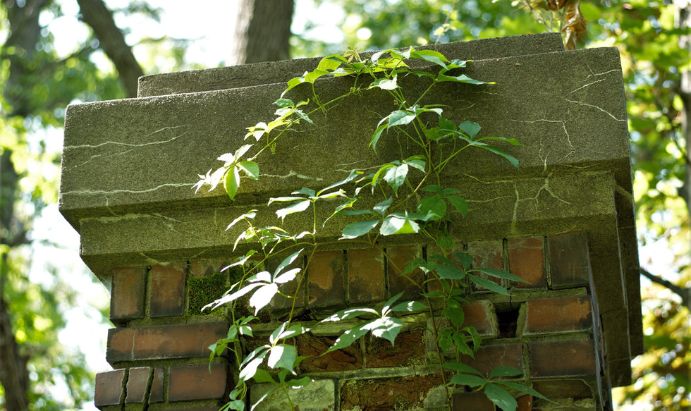 Old brick pillars overgrown by weeds and