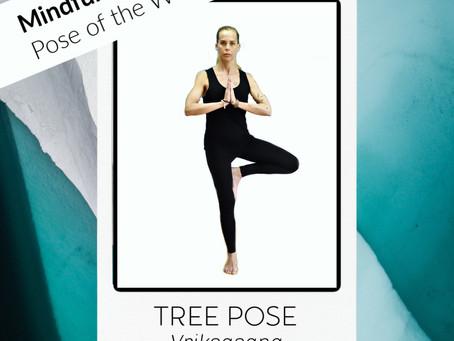 Pose of the week: Tree Pose - Vriksasana