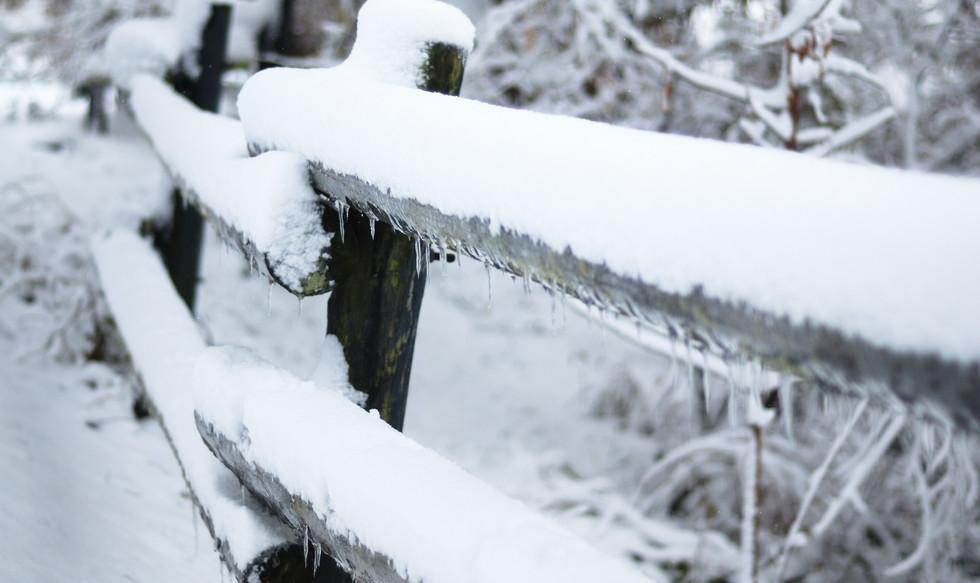 Winter in NOTL