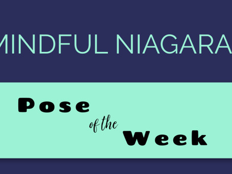 Enhance your personal yoga practice with help from our upcoming Pose of the Week series.