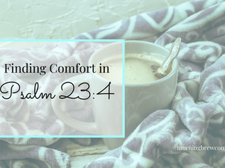 Finding Comfort in Psalm 23:4