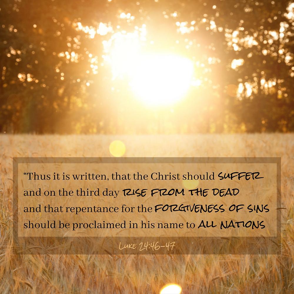 Luke 24:46-47, verse of the week, verse of the day, Bible verse, sunshine, wheat field