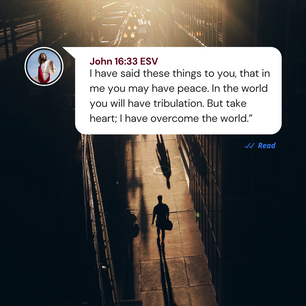 John 16:33 | Bible Verse Devotional