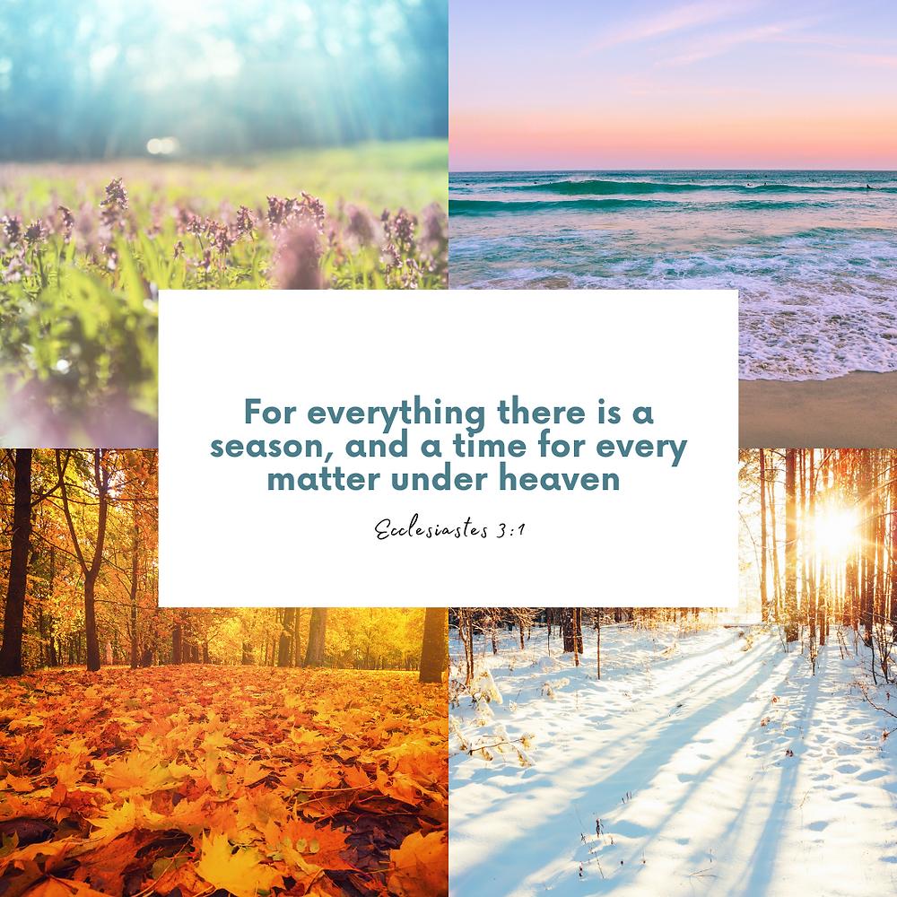 Ecclesiastes 3:1 Bible verse