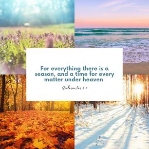Ecclesiastes 3:1 | Bible Verse Devotional