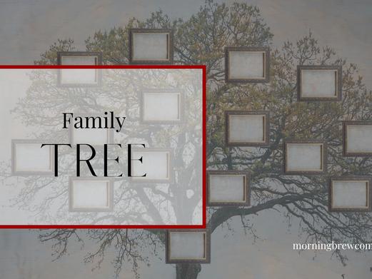 Family Tree | Godly Family Bible Study