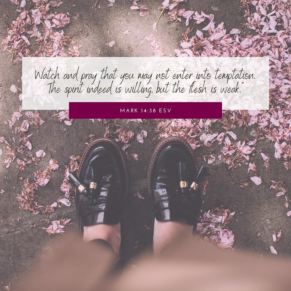 Mark 14:38 ESV Bible verse