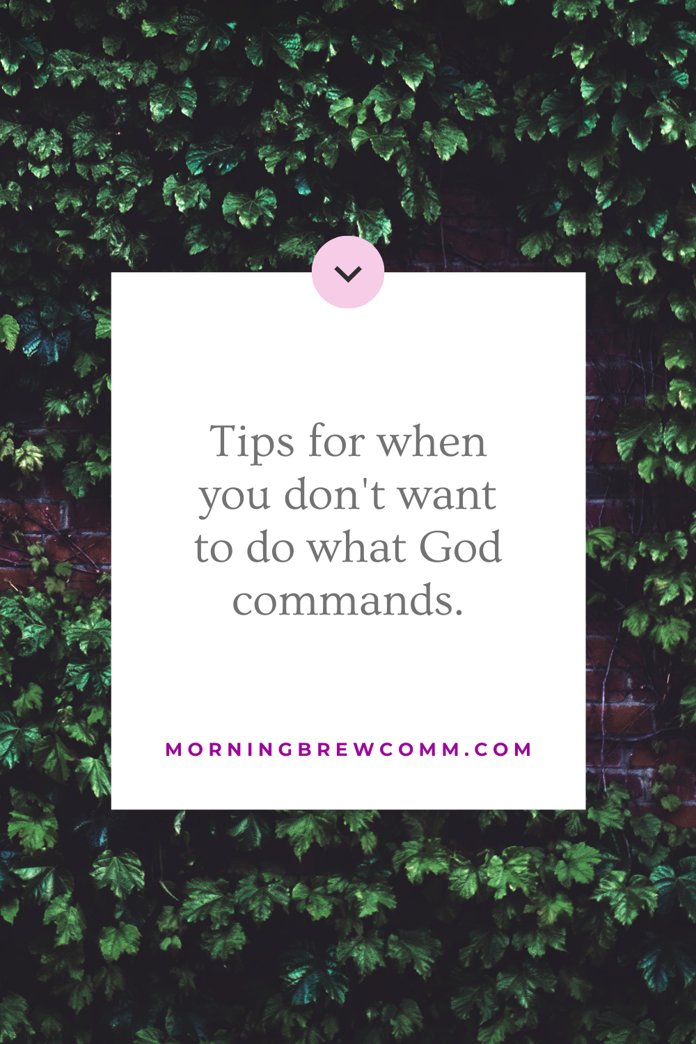 tips for when you don't want to do what God commands