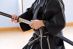 Iaido Japanese Martial Arts.jpg