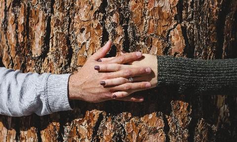 Radical Honesty In Relationships Anyone?