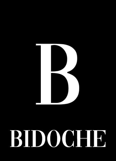 Bidoche bx.PNG