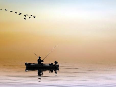 Angler aufgepasst – jetzt ist Ihr Köderprinzip gefragt!