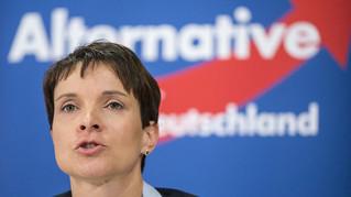 German Governmental Crisis – A Dilemma