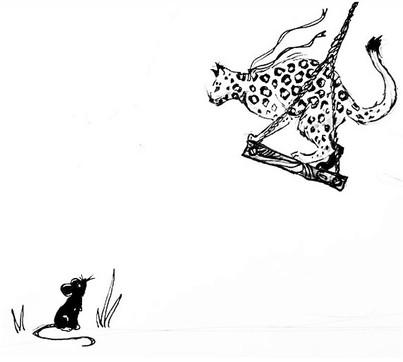 cat (1).jpeg